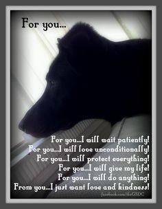 Pet Bereavement