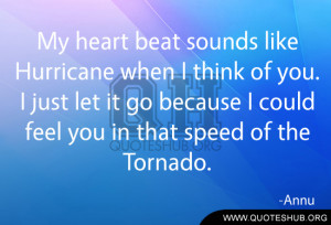 My heart beat sounds like Hurricane when I think of you. I just let it ...