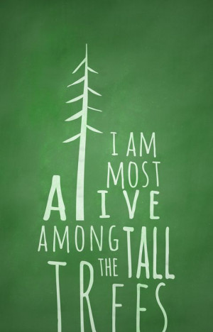 am most alive among the tall trees.