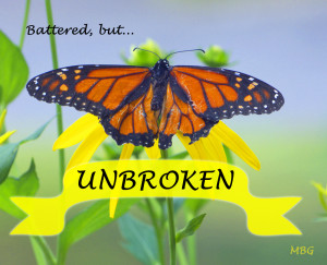 Inspirational Quotes On Butterflies