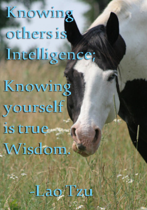 Knowing Yourself Quotes