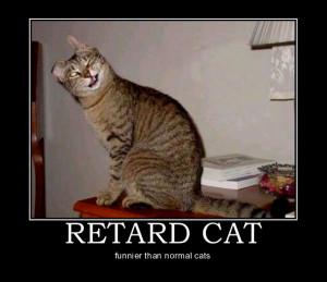 Animal Motivational Poster: Retard Cat