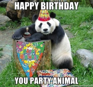 funny happy birthday meme animal