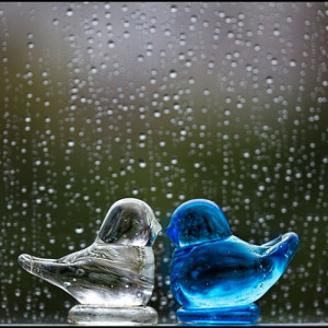 Beautiful Rainy Day Quotes...