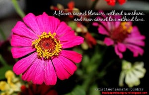Famous quotes about 39Flowers39 QuotesSays COM