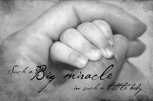 Baby Hand In Hand Photograph