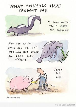 Animal wisdom... Haha...