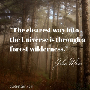 "John Muir #Quotes #Quote : ""The clearest way into the Universe is ..."