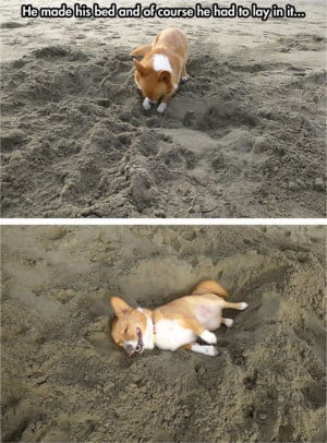 beach // funny pictures – funny photos – funny images – funny ...