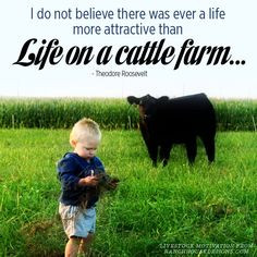 ... Life on a cattle farm. --Theodore Roosevelt #quotes #Darigold #Farm