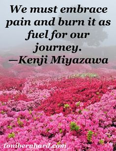 Pain Quote – Strength Inspiration