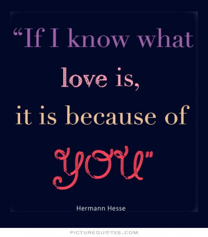 If i know what love is, it is because of you. Picture Quote #1