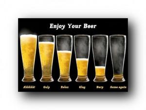 Framed Enjoy Your Beer Poster Funny Beer Chart 33601 | eBay