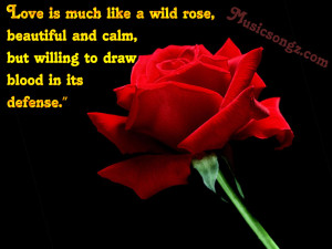 Is Much Like A Wild Rose Beautiful And Calm, But Willing To Draw Blood ...