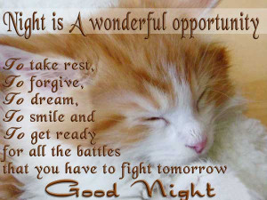 Night is a wonderful opportunity to take rest, to forgive, to dream