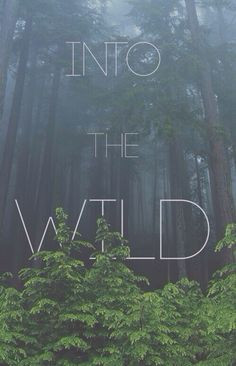 ... Wild, Quotes Life, Inspiration Quotes, Into The Wild, Beautiful Nature