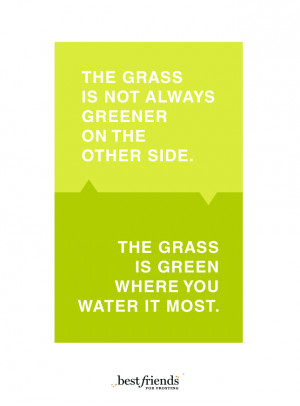 """We've all heard that """"the grass is always greener on the other ..."""