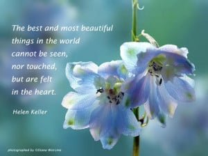 ... and Most Beautiful things In the World Cannot be seen ~ Flowers Quote