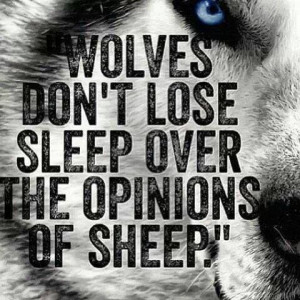 Wolves don't lose sleep over the opinions of sheep.