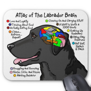 Black Labrador Brain Atlas Mouse Pads