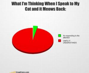 Funny statistics