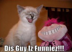animal with captions, caption animals, lol animals, lolcats, funny ...