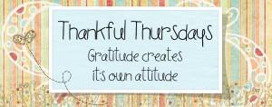 inspiration, thankful thursday, thursday quotes, daily quotes, nachi ...