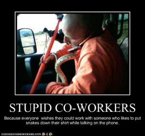 Stupid Co Workers