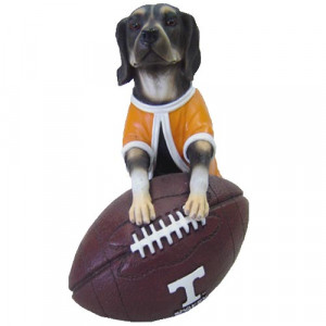 Tennessee Vols Smokey with Football