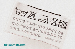 Love this Anais Nin quote... , One's life shrinks or expands according ...
