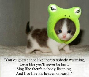 18 inspirational quotes from cute baby animals