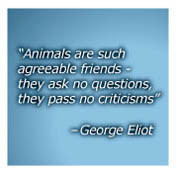 Quotes About Compassion for Animals