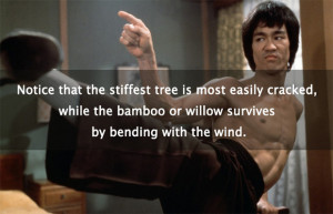 ... of Bruce Lee: 25 Quotes on Mastery, Martial Arts & Consciousness
