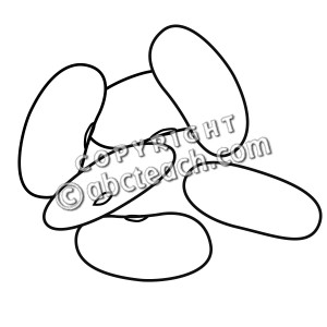 Clip Art: Kidney Beans (coloring page) - preview 1