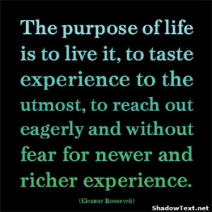 Famous Experience Quotes with Images|Learning from your Experiences in ...