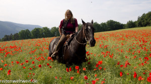 Horseback Riding worldwide