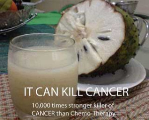 Is Sour Sop a Cancer Killer 10,000 times Stronger Than Chemotherapy?