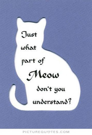 Funny Quotes Cat Quotes Animal Quotes