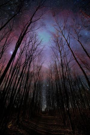 Funny photos beautiful night sky woods stars