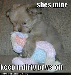 She's Mine, Keep U Dirty Paws Off, Funny Animal Quote