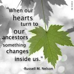 ... history ancestry quotes change inside families trees genealogy quotes