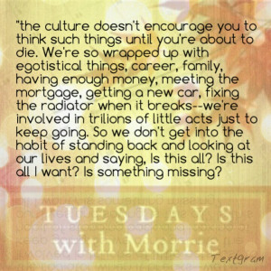 morris book tuesdays with morrie quotes a tuesdays with morrie