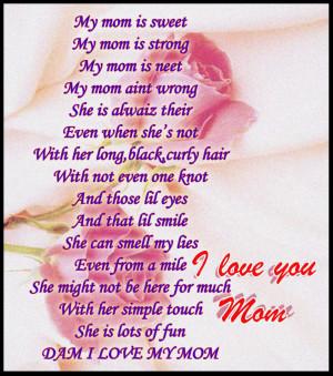 Dam I Love My Mom Image