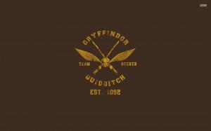 Gryffindor Quidditch team wallpaper 1920x1200