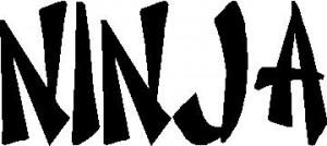 Skull Sticker Ninja Picture
