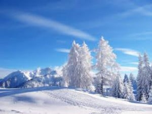 Skiing, Snowflakes and Winter Quotes, Sayings and Fun Facts