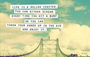 enjoy, life, quote, roller coaster, scream, text