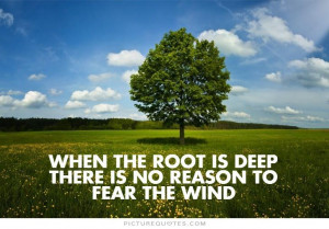 Motivational Quotes Strong Quotes Deep Quotes Tree Quotes Wind Quotes
