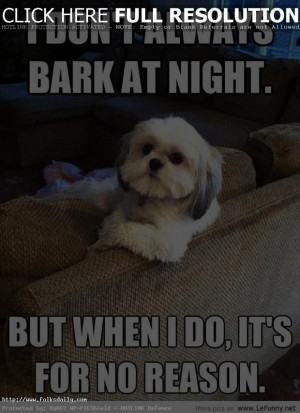 funny-pictures-of-dogs-with-quotes-7