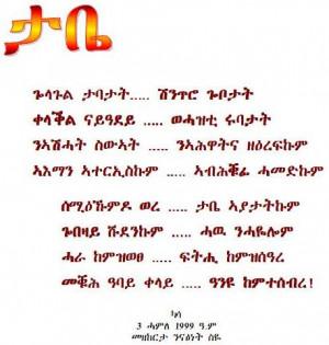 funny amharic poems